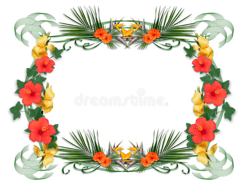 Tropical flowers border royalty free illustration