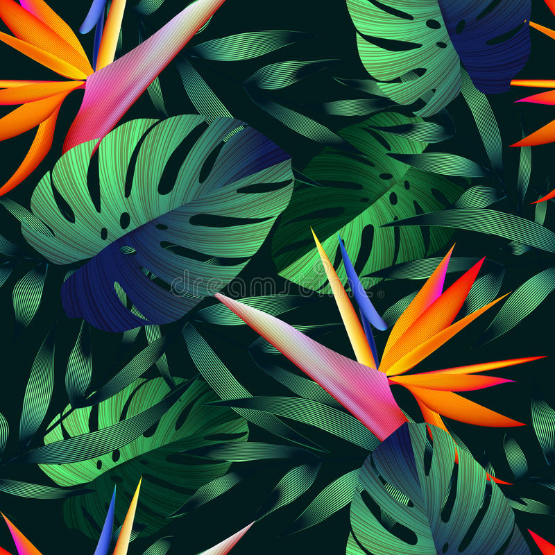 Free Tropical Flowers, Jungle Leaves, Bird Of Paradise Flower. Stock Photos - 77911083