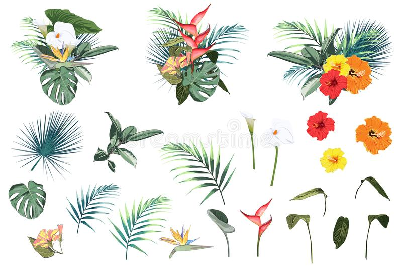 Summer holidays tropical elements: flowers and leaves. Vector set. Tropical flowers, palm leaves, jungle leaf, hibiscus, callas, heliconia flowers. Vector vector illustration