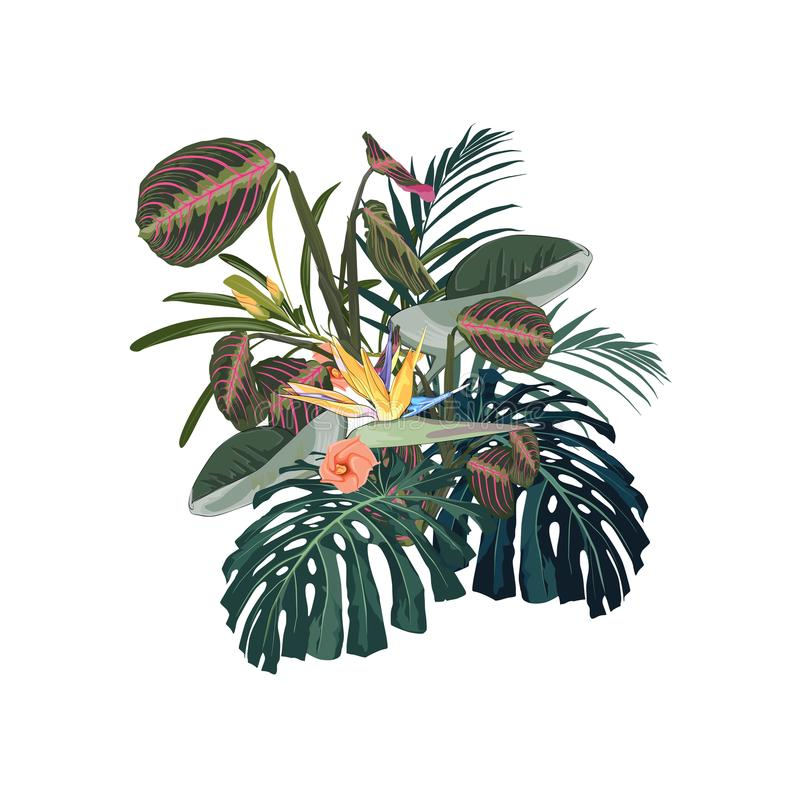 Tropical flowers, palm leaves, jungle leaf, monstera and strelitzia flower. Vector exotic illustrations, floral elements isolated,. Hawaiian bouquet for stock illustration
