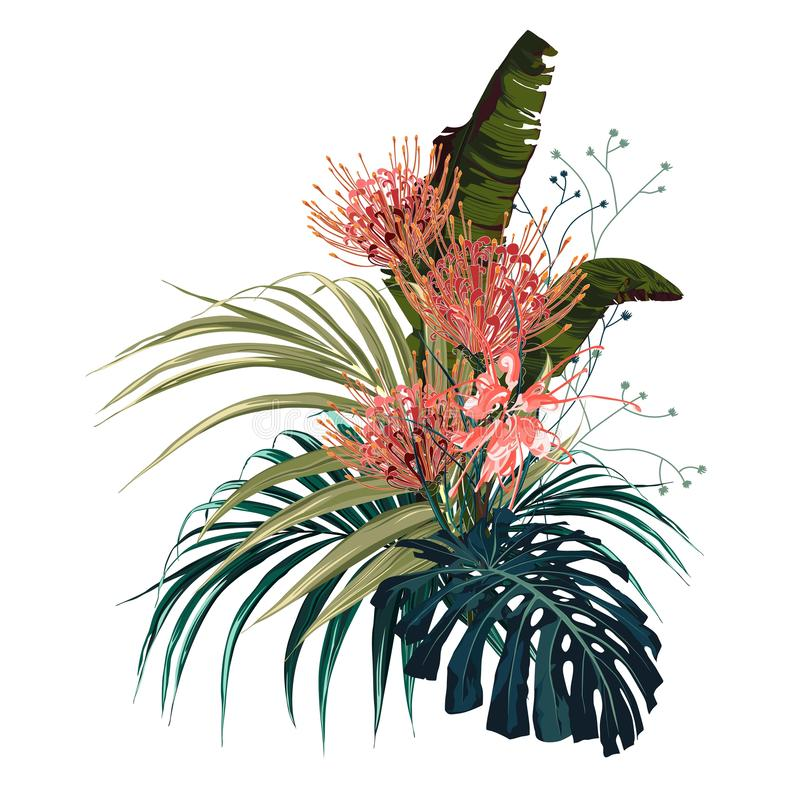 Tropical flowers, palm leaves, jungle leaf, protea flower. Vector exotic illustrations, floral elements isolated, Hawaiian bouquet for greeting card, wedding royalty free illustration