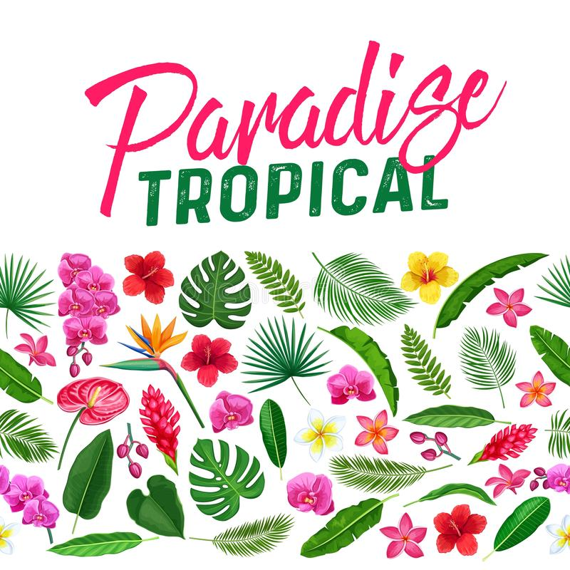 Tropical flowers seamless border vector illustration