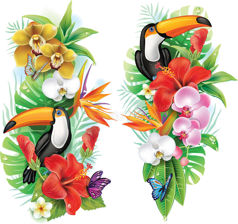 Tropical flowers and toucan vector illustration