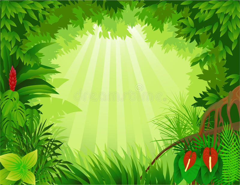 Download Tropical forest stock vector. Image of asian, environment - 13416208