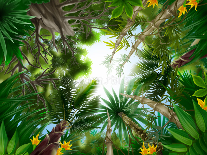 Tropical forest royalty free illustration