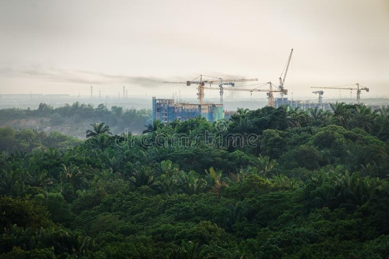 Tropical forest destruction - construction of skyscrapers in forest zone. Concept expansion of cities, increasing carbon dioxide in atmosphere. Rainforest royalty free stock photos