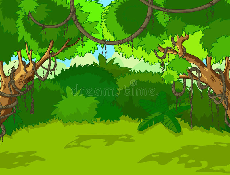 Tropical Forest Landscape. A Green Tropical Forest Landscape with Trees and Leaves stock illustration