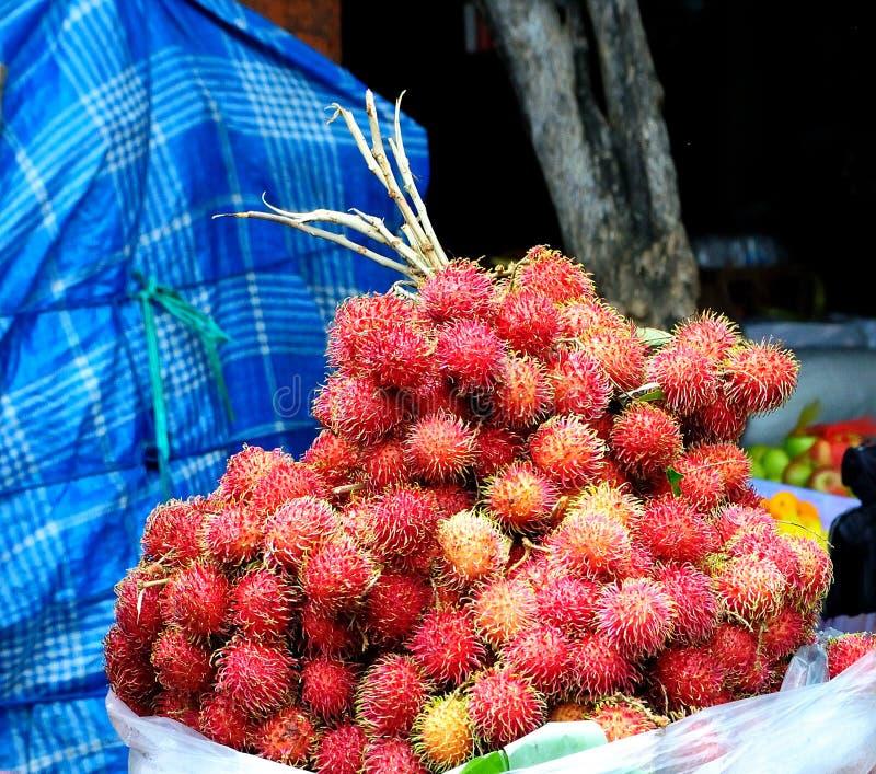Download Tropical fruit stock image. Image of tropics, bali, rambutan - 12503335