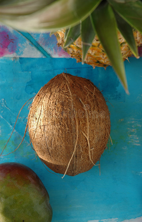 Download Tropical Fruit stock photo. Image of natural, food, organic - 430488