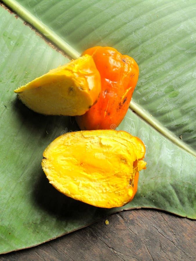 Tropical fruit in the amazon jungle. Still life of tropical fruit in the amazon jungle on a leaf stock photos