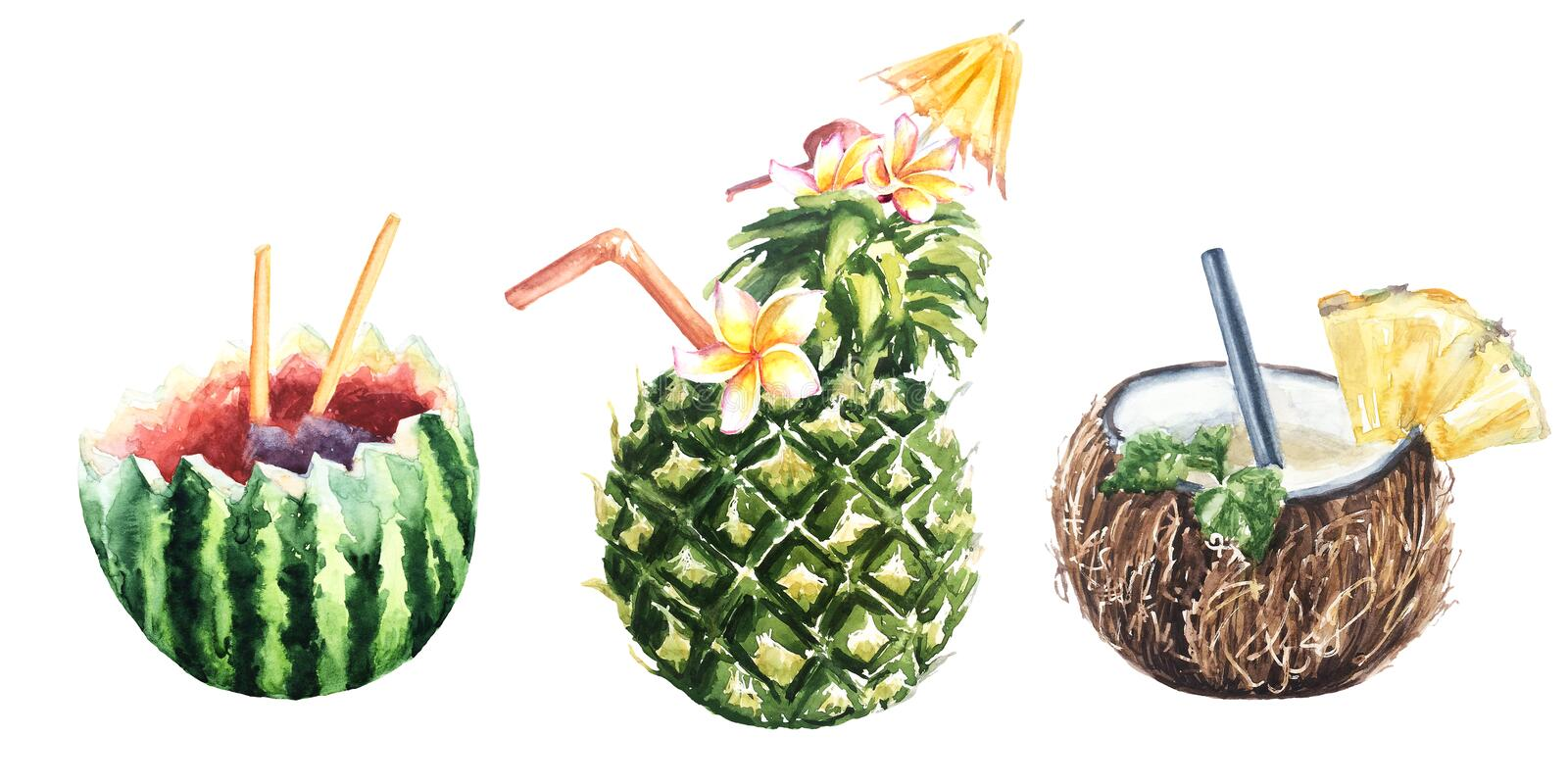 Tropical fruit cocktail pineapple, coconut and watermelon vector illustration
