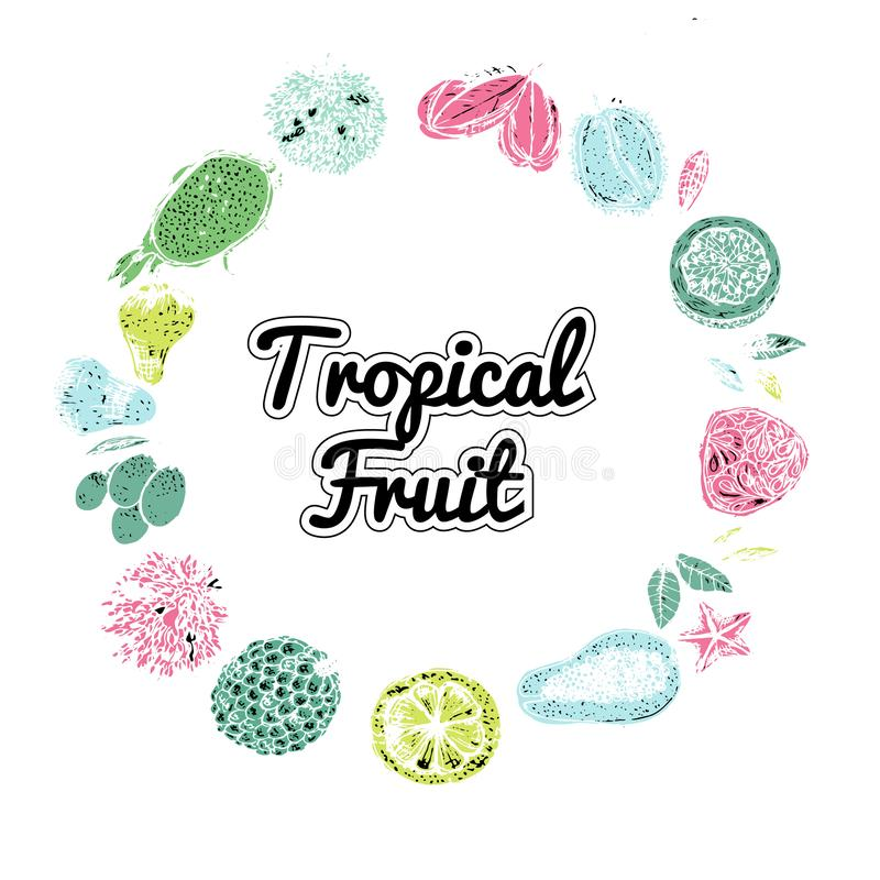 Tropical fruit design set. Fruit: mangosteen, papaya, durian, pomelo, guava, chompoo, mangosteen, carambola. Tropical fruit design set. Fruit: mangosteen, papaya royalty free illustration
