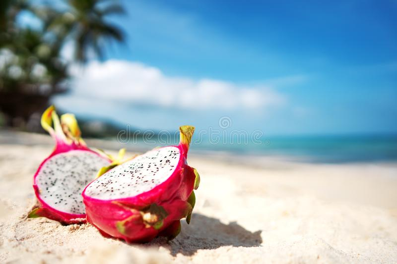 Tropical fruit dragonfruit lies on a river near the sea on a background of palm trees.  stock photo