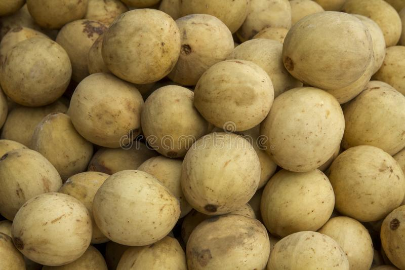Tropical fruit, duku or Langsat, lansium domesticum corr royalty free stock image