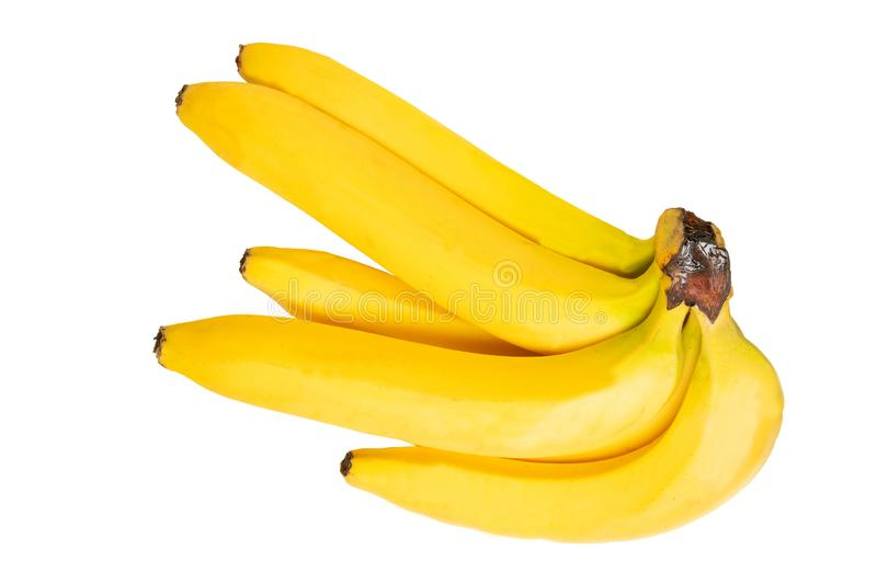 Tropical fruit isolated. Closeup bunch of tasty ripe bananas isolated on a white background. Health concept royalty free stock photos