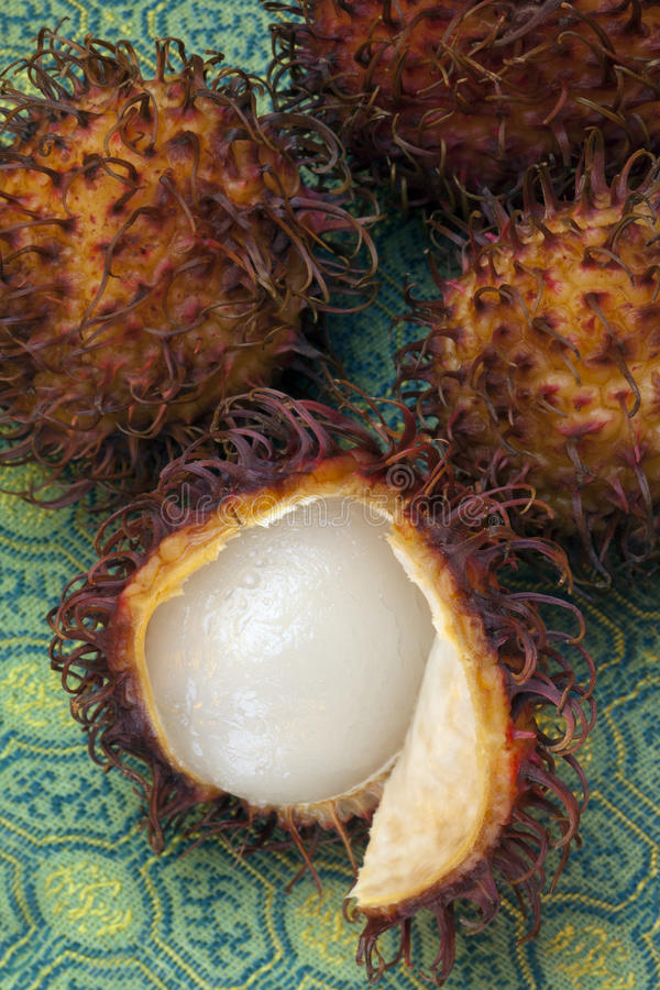 Download Tropical Fruit - Rambutan stock image. Image of food - 37964403