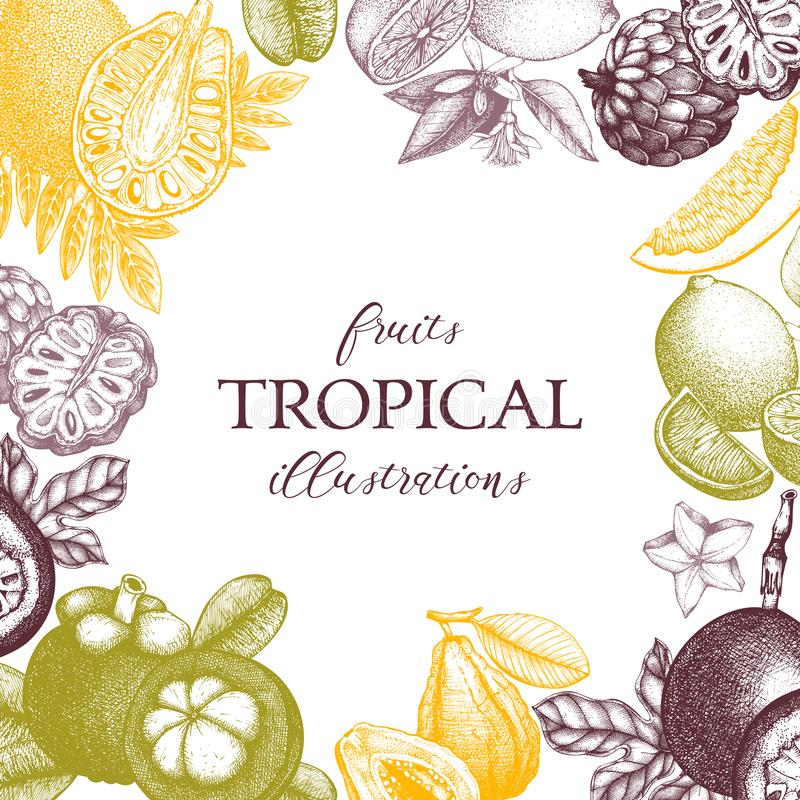 Vector card design with hand drawn tropical fruits illustration. Decorative inking background with vintage exotic plants sketch. S. Ketched template vector illustration