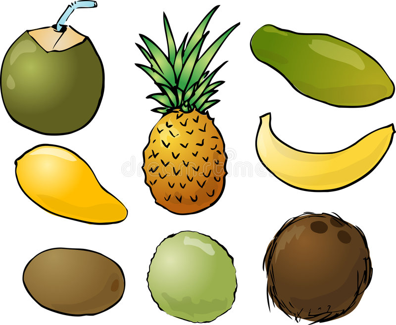 Tropical fruits illustration royalty free illustration
