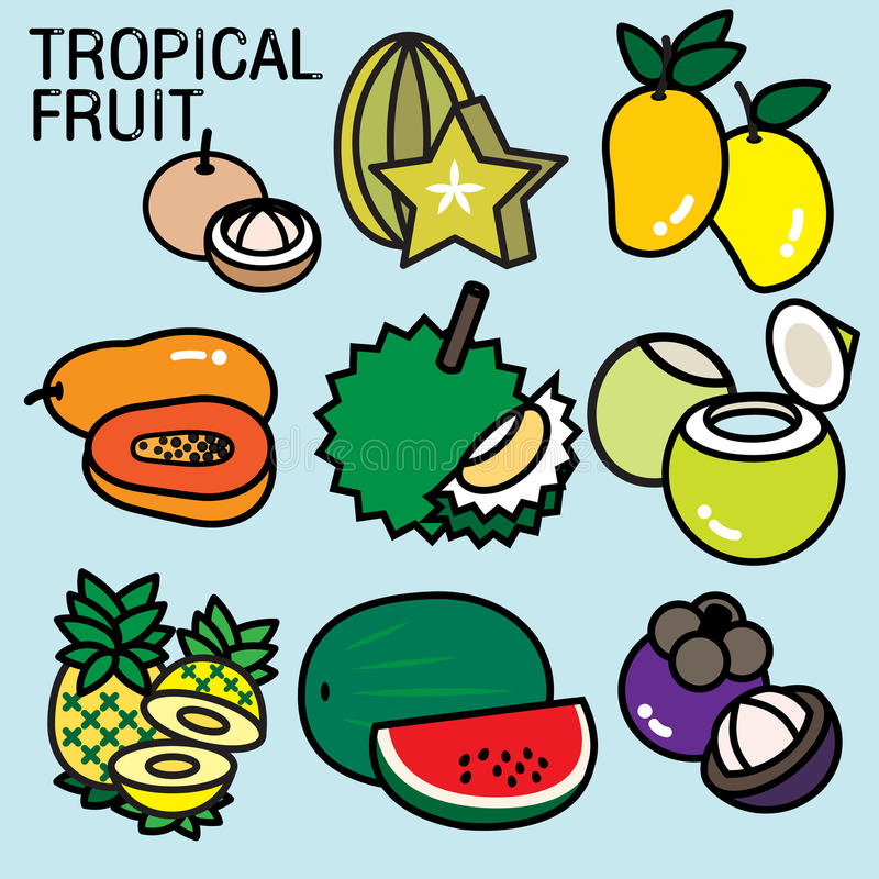 TROPICAL FRUITS. List of fruit contains the name of fruits are cultivated mostly in countries with warm climates. Mostly they are considered edible in some vector illustration