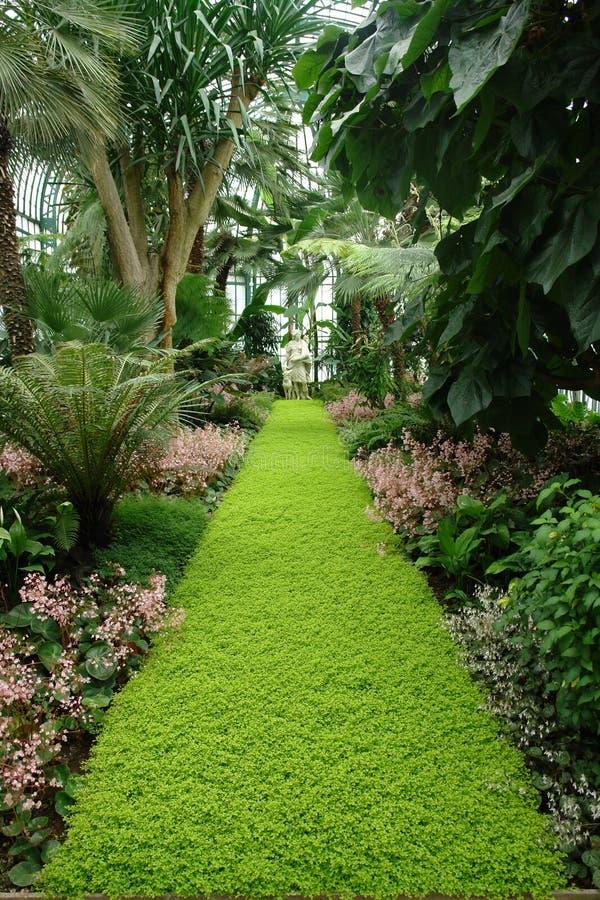 Free Tropical Garden Royalty Free Stock Photography - 1234357