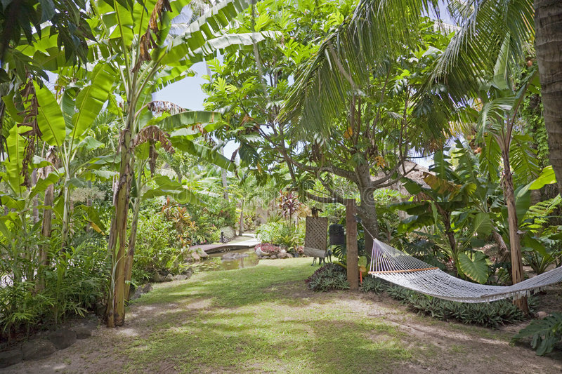 Download Tropical Garden With Hammock Stock Image - Image: 8465893