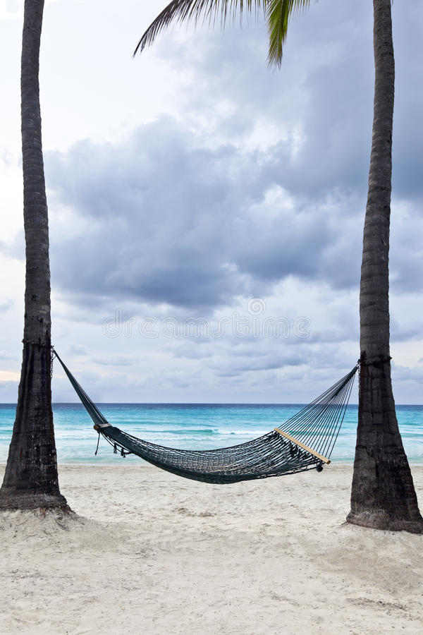 Download Tropical Getaway stock photo. Image of resort, palm, relaxation - 28512802