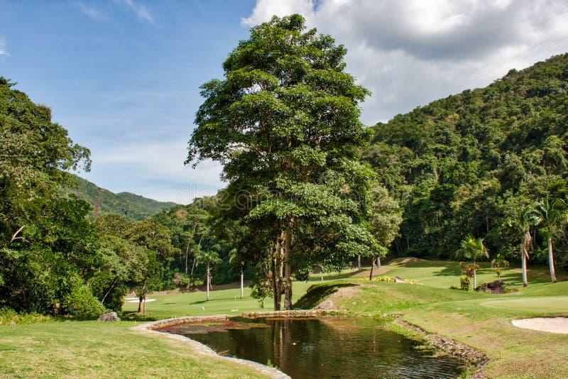 Nature photography, relaxing in Venezuela. stock photos