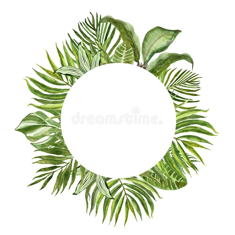 Tropical green foliage round frame for cards, banners. Watercolor summer exotic plants and leaves border on white background royalty free illustration
