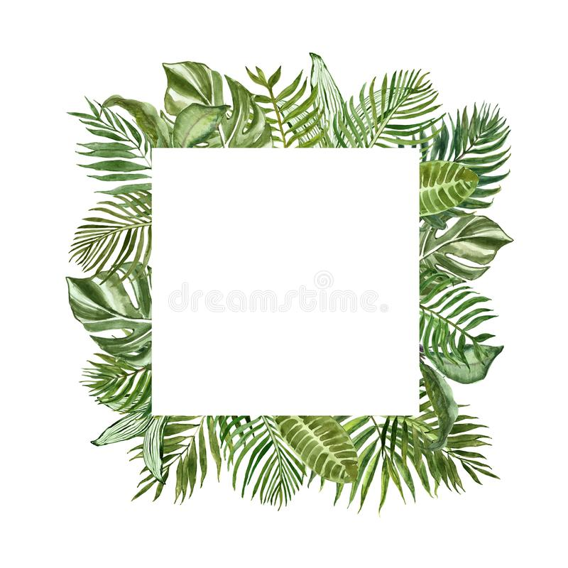 Tropical green foliage square frame for cards, banners. Watercolor summer exotic plants and leaves border on white background royalty free stock photos