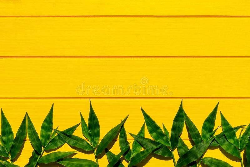 Tropical green grasses on yellow wood background top view. Shot royalty free stock image
