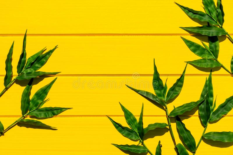 Tropical green grasses on yellow wood background top view. Shot stock photo