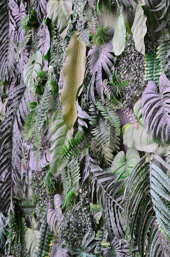 Tropical green leaves background, fern, palm and Monstera Deliciosa leaf on wall royalty free stock images