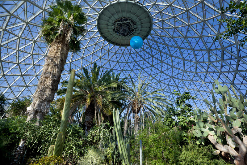 Download Tropical greenhouse stock photo. Image of indoors, nature - 26874622