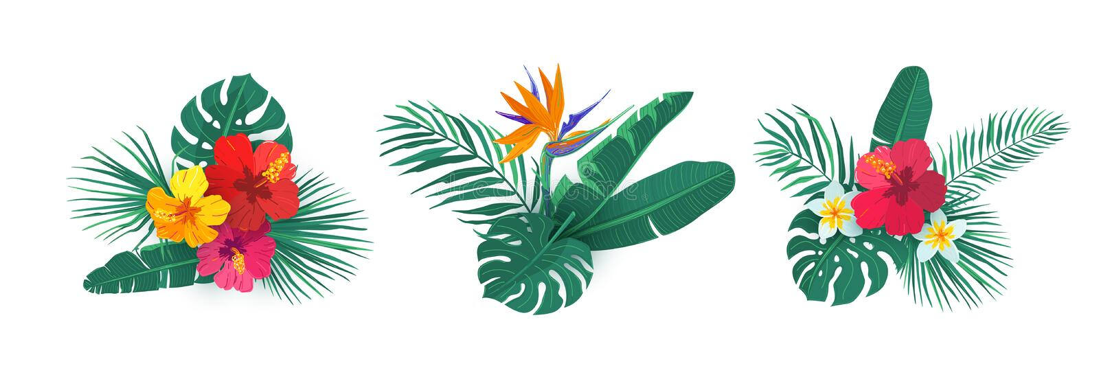 Tropical hawaii flower bouquet vector set. Composition with exotic plants in simple flat style for summer print design royalty free stock photo