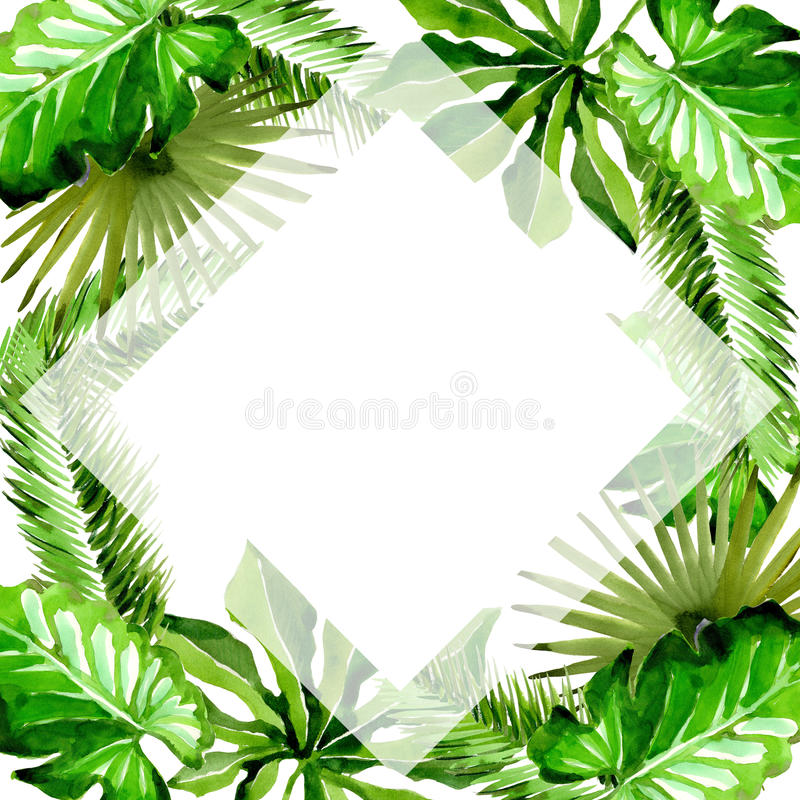 Tropical Hawaii leaves palm tree frame in a watercolor style. vector illustration