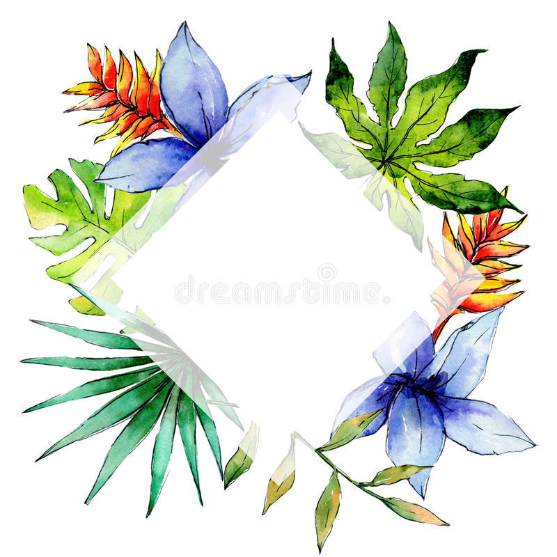 Tropical Hawaii leaves plants frame in a watercolor style. royalty free illustration