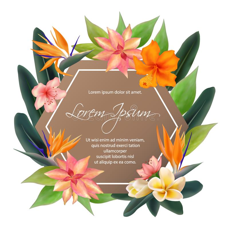 Exotic plants border with text place, bouquet. Tropical hexagon frame vector illustration with hibiscus, plumeria or frangipani flower, bird of paradise african vector illustration