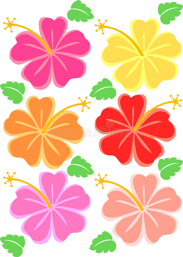 Tropical Hibiscus Flowers/eps stock illustration