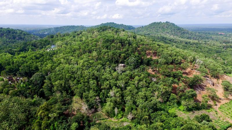 Tropical Hill Borneo Forest - Rainforest View stock photo