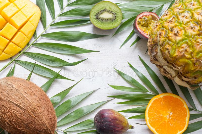Tropical holiday summer abstract background with palms and fruits. Art royalty free stock images