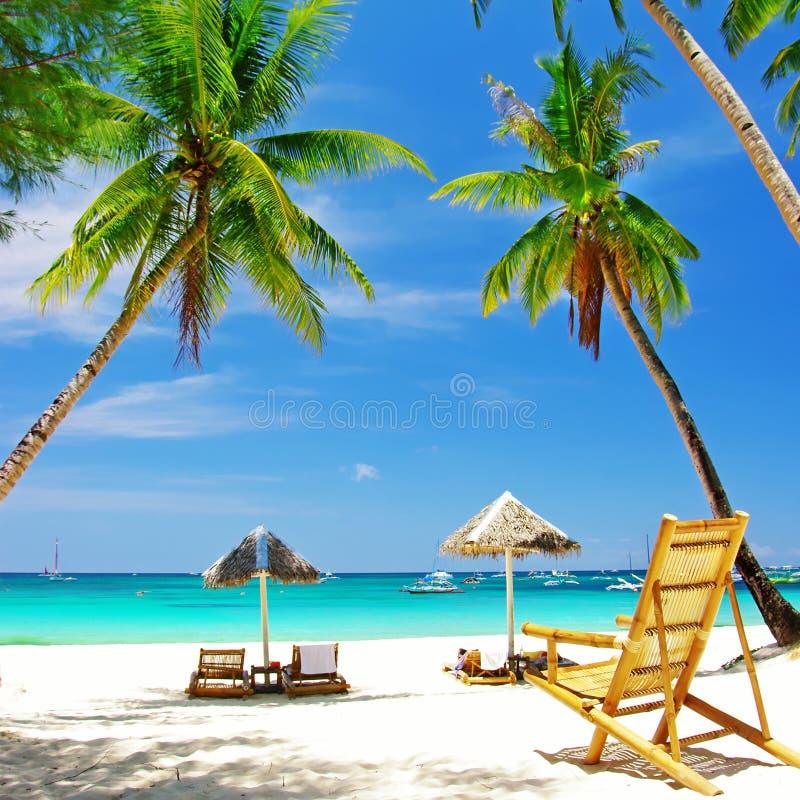 Tropical holidays stock photos