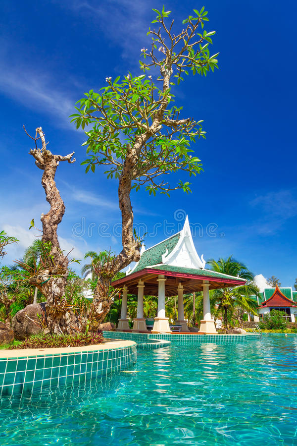 Download Tropical holidays scenery stock image. Image of andaman - 31658807