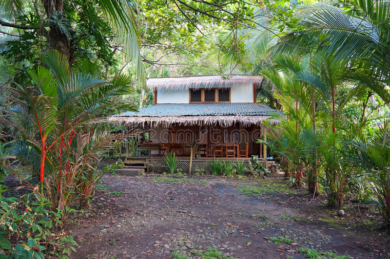 Tropical home with exotic vegetation royalty free stock photos