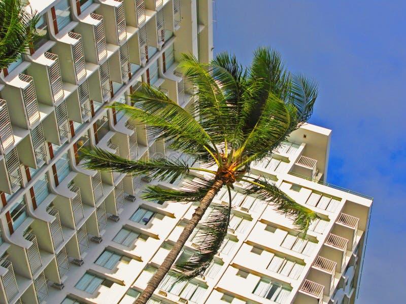 Tropical hotel royalty free stock photos