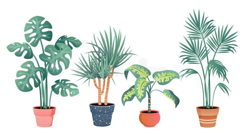 Watercolor House Plants Clip Art, Indoor Plants Potted Plant Clipart,  Cactus Succulent, Ceramic in 2020   Plant clips, Indoor plant pots, House  plants