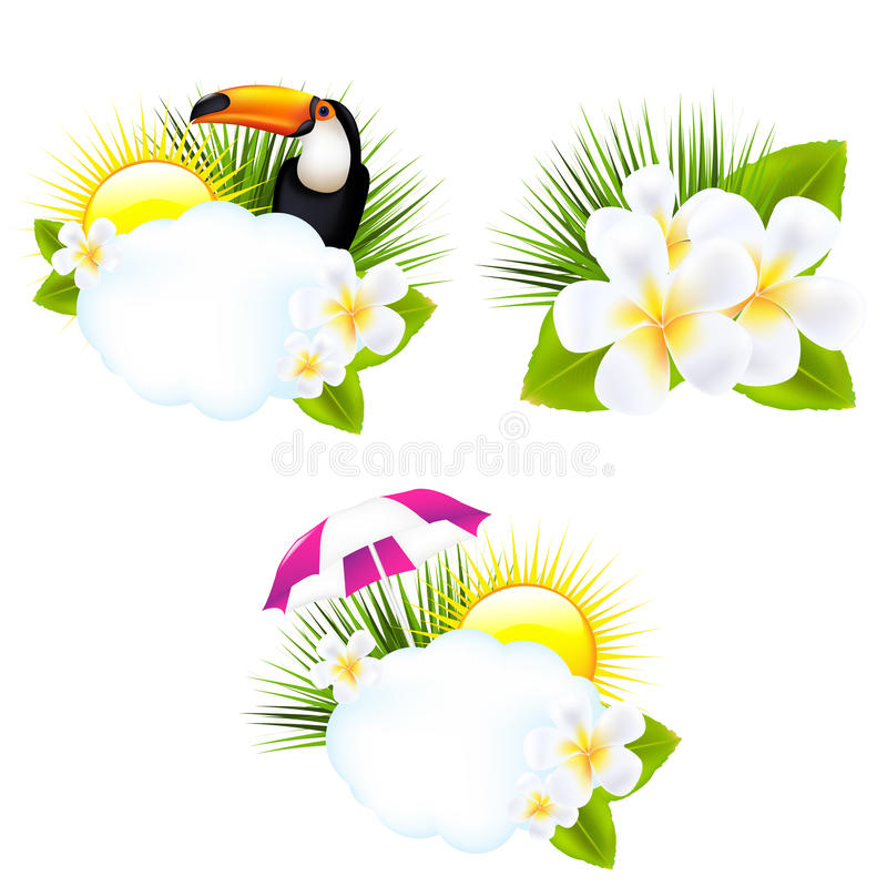 Tropical Illustrations Royalty Free Stock Images