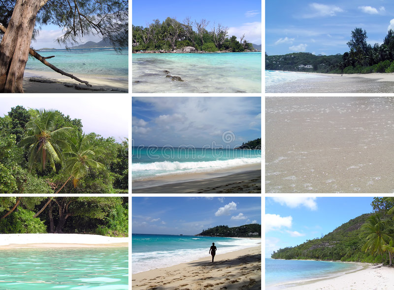 Tropical installation. Seychelles. The collection of photos royalty free stock image