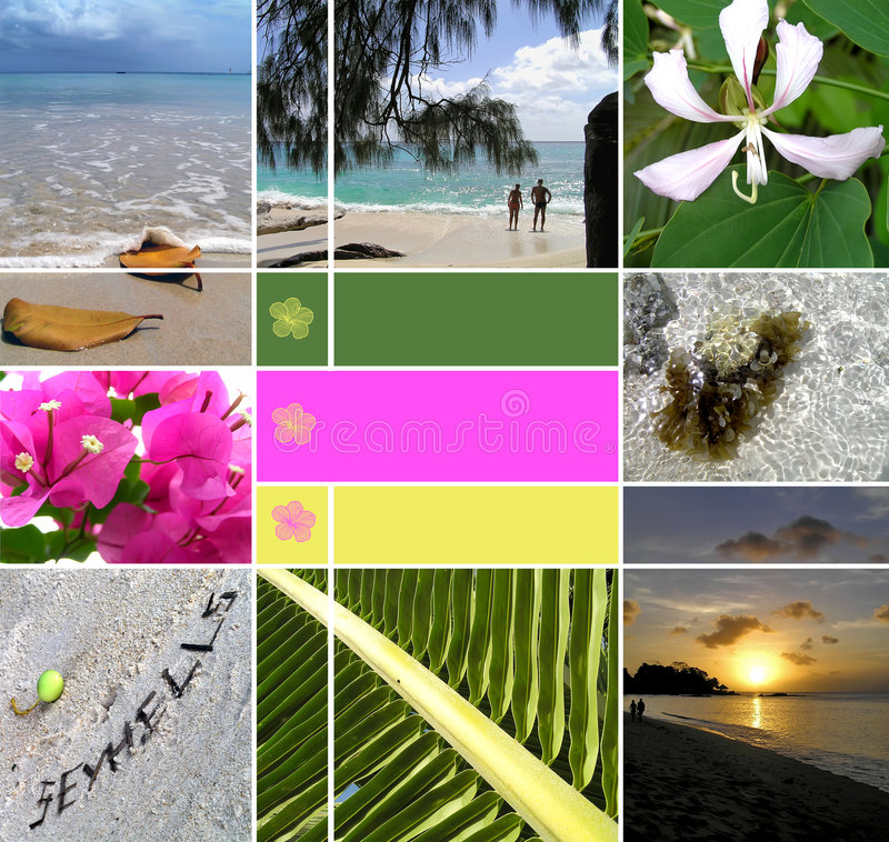 Tropical installation. Seychelles. The collection of photos. There is an empty seat for your text stock photography