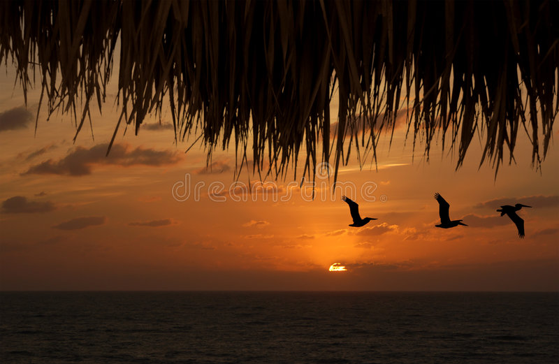 Tropical island getaway stock images