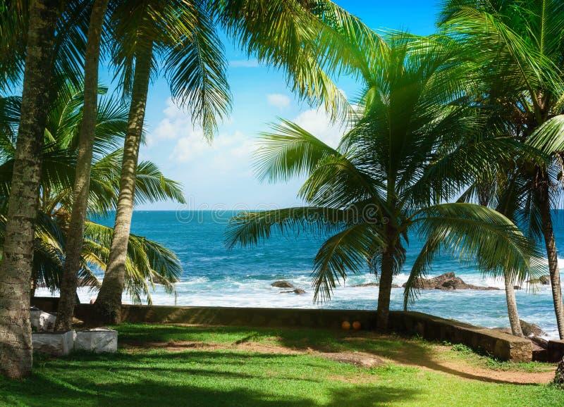 Tropical island in the Indian Ocean. stock photos
